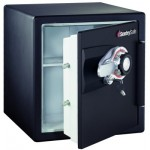 Sentrysafe H3300 Small Firesafe Review Water And Fire