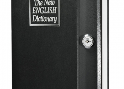 Trademark Home Dictionary Diversion Book Safe Review