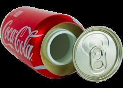 Coca Cola Coke Soda Can Diversion Stash Safe Review